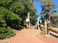 Runners heading to next checkpoint via Mt. Baden-Powell